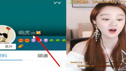 YY第一人!超牛YY号惊现2893!